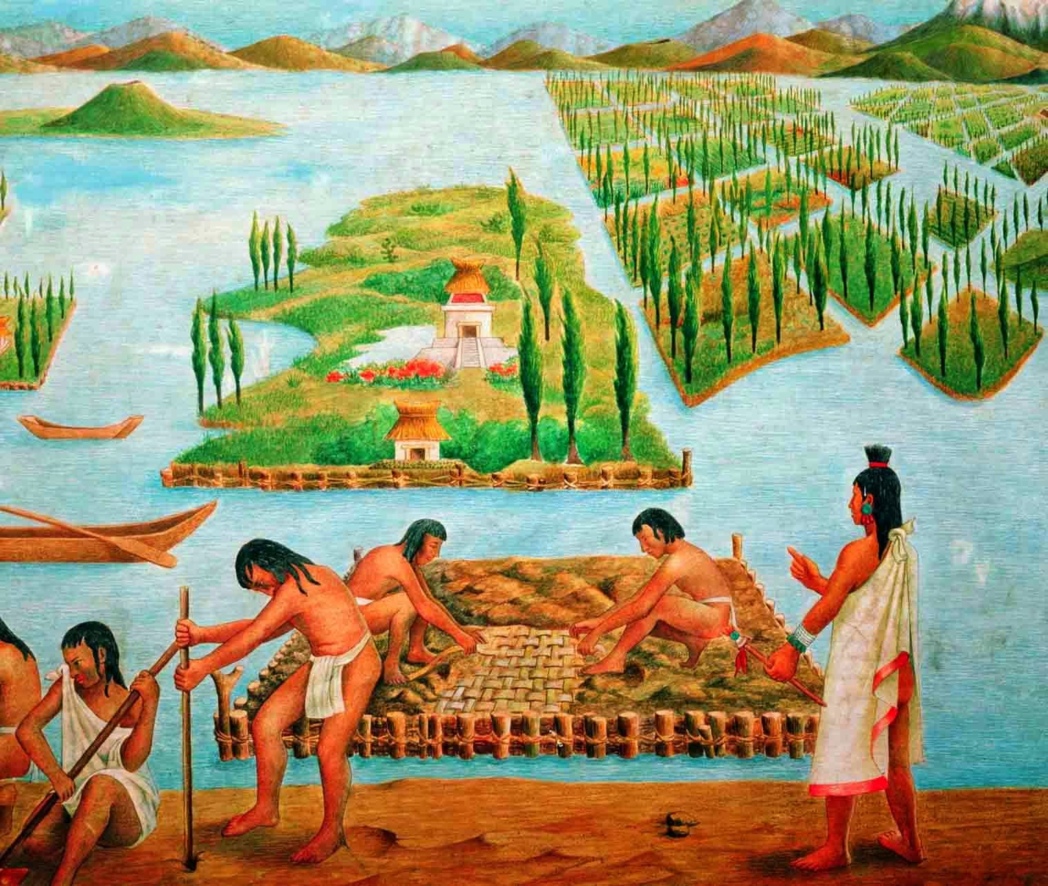 chinampas aztecas -#main