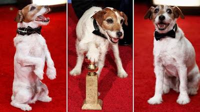 Uggy, el perro actor que gana un Globo de oro 2012 por The artist