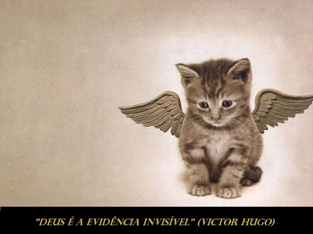 Frases Victor Hugo