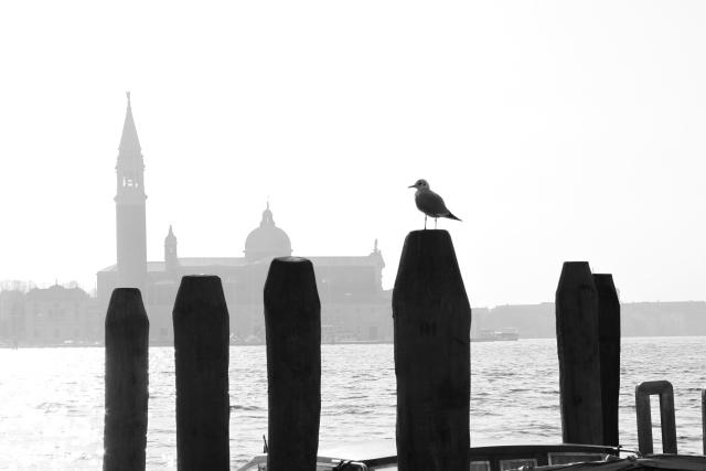 Foto en blanco y negro Venecia