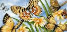 бабочки от Оли