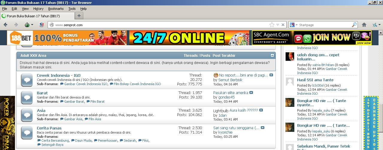 Membuka Situs Terblokir (Gunakan TOR Browser) Proxy Otomatis Merubah ...
