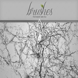 Beautiful free ps crack brushes