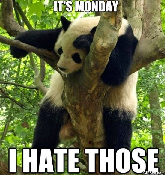 it's monday. I hate those