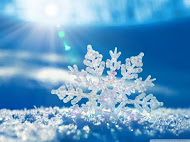 Vackra vinterland!