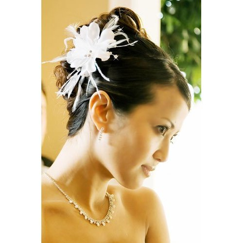Photos Gallery For Fun: IVORY Floral Feather Bridal Hair Accessories