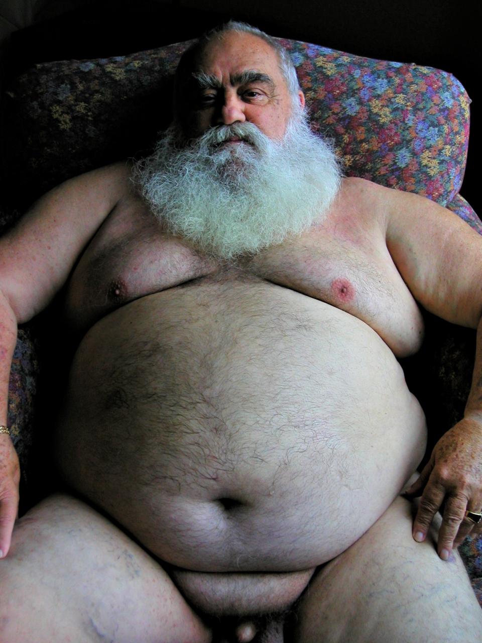 gay Big bears fat