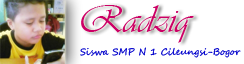 Radziq Blog