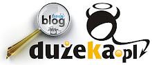Twój Blog w Dużym Ka