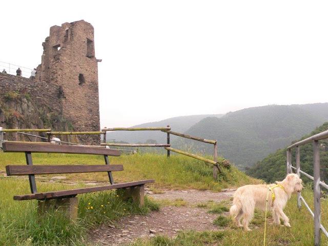 Burgruine Burg Are Altenahr Sommer Ausblick Panorama Urlaub