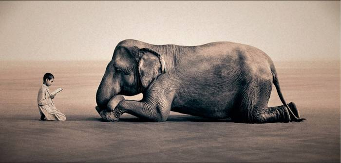 "Canadian documentary photographer Gregory Colbert began his career working with the master of photography in Paris, where he was shooting a documentary on important social issues. That movie led by Gregory Colbert in the world of photography. His first solo show as a photographer, took place in 1992, when the wizard turned 32 years old. The exhibition was held at the gallery «Musee de l'Elysee». Gregory spent the next decade traveling, visiting Asia, Africa and even Antarctica. Everywhere keen photographer demonstrating the relationship of animals and humans. His most famous exhibition ""Ashes and Snow"" saw more than ten million people across the globe"