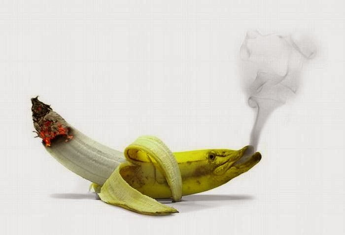 Banana In Cigarette Mod Funny Photo