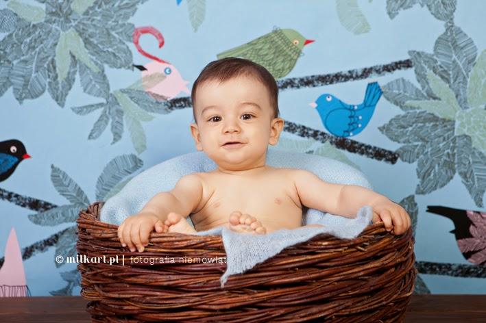 Sesje fotograficzne dzieci, zdjęcia niemowlaków, fotografia maluszków, sesje na roczek, na prezent