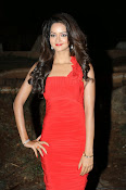 Glamorous Shanvi latest photos in Red-thumbnail-5
