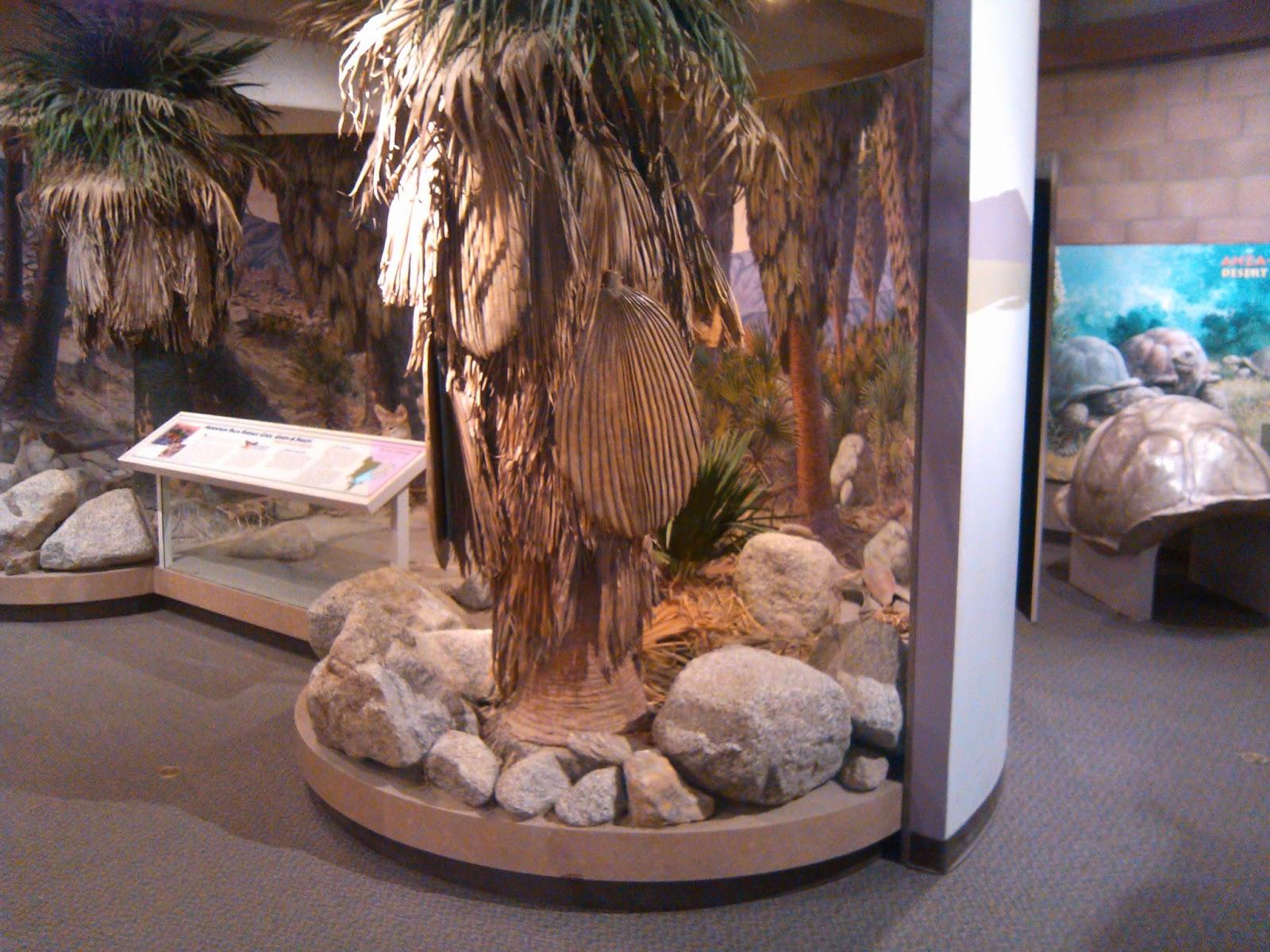 Visitor Center: Anza-Borrego Desert State Park