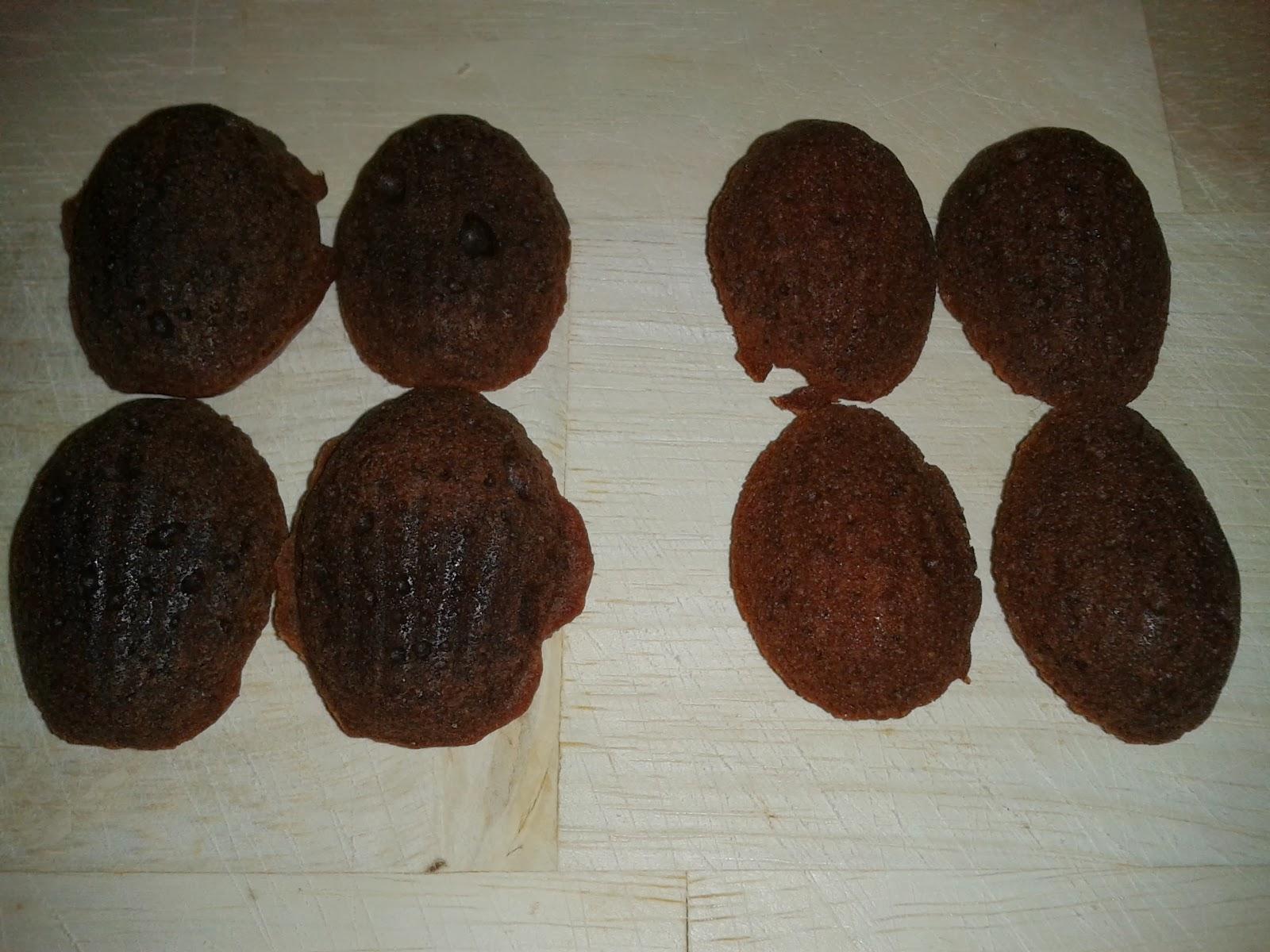 Honey chocolate madeleines