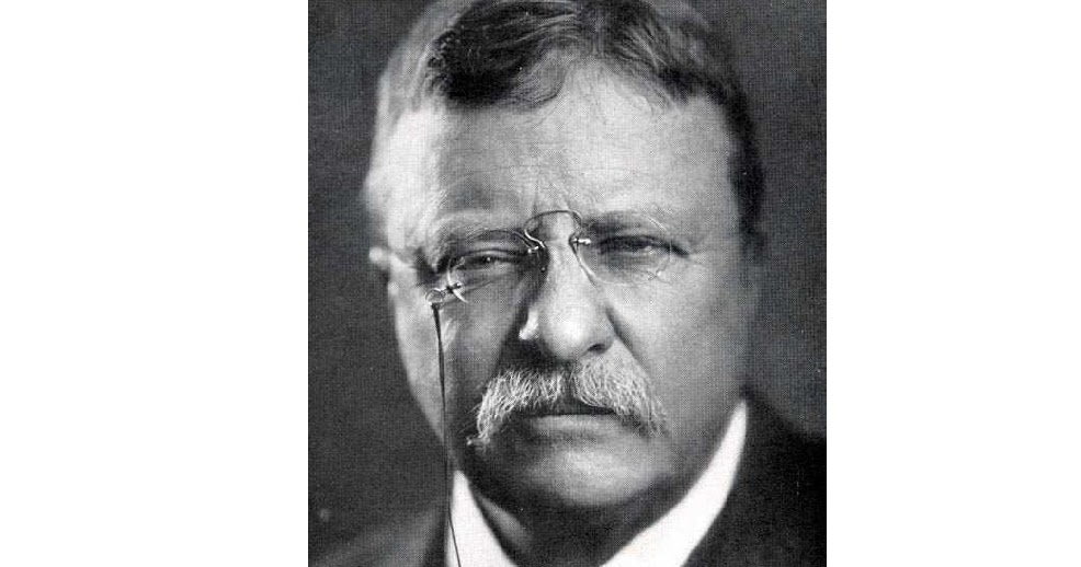 teddy roosevelt dbq Ap® united states history 2007 free-response questions president theodore roosevelt in regard to two of the following franklin roosevelt (1936) lyndon.