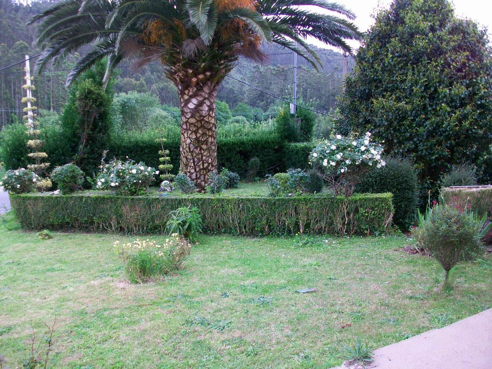Multiservicios mantenimiento de jardines for Mantenimiento de jardines