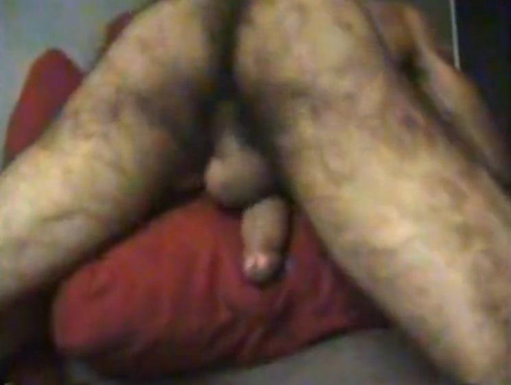 galeria sexo peluda peludo: