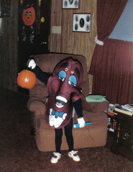 i dont have a picture but i wore this costume in 1989 - California Raisin Halloween Costume