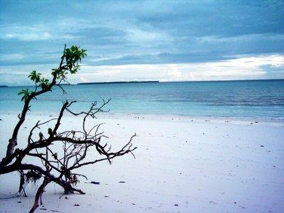 Eddy Pasaribu Superblog Ngurbloat Pantai Pasir Panjang Tual Di Maluku Tenggara