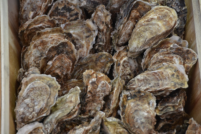 Les Fruits de Mer Marseille oysters