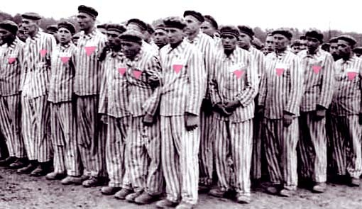 gays in the holocaust