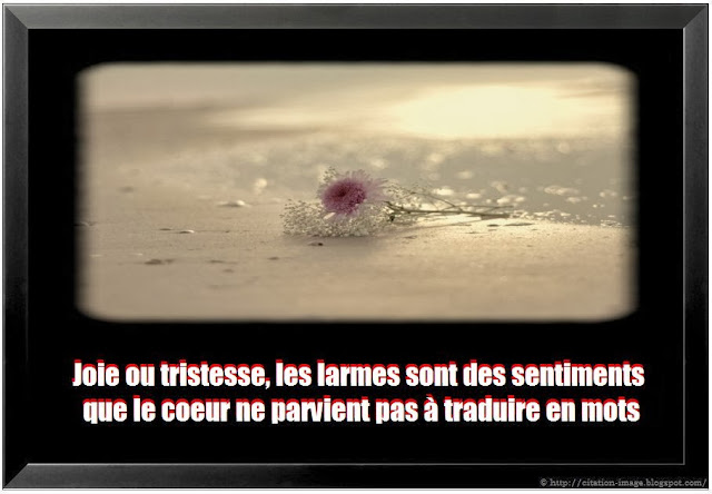Citation triste joie en image