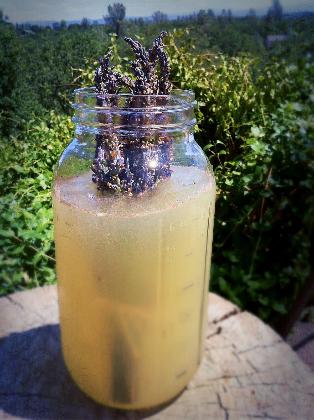 riddlelove: Raw Honey-Sweetened Lavender Lemonade ~ A GAPS ...