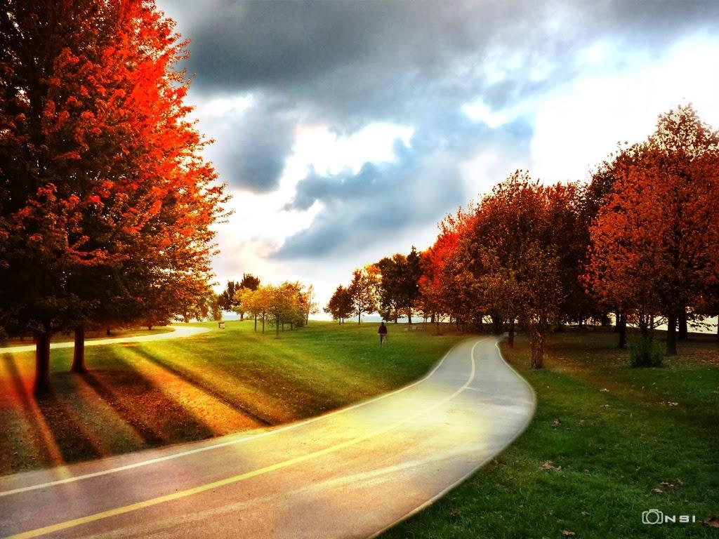 "<img src=""http://1.bp.blogspot.com/-ey5UF-ZSJ2g/UtF1dJeZxsI/AAAAAAAAHm8/jxd68BRJRWI/s1600/parks-autumn-rays.jpeg"" alt=""park wallpapers "" />"