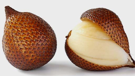 khasiat dan manfaat buah salak