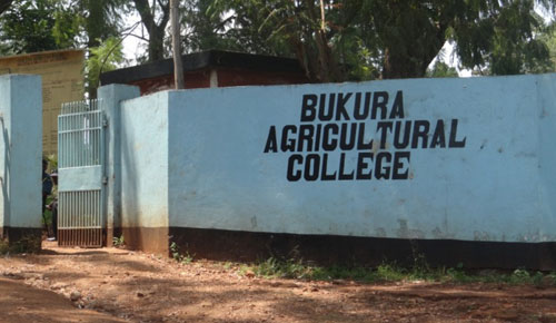 DAILY POST: Career Opportunities in BAC, Kenya