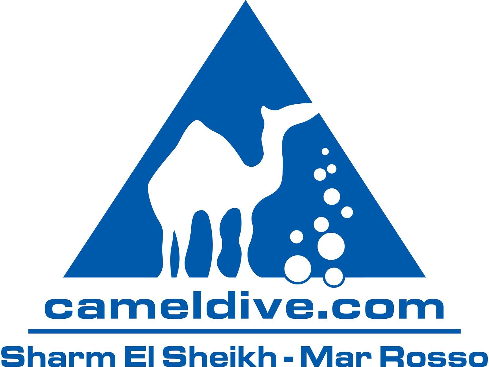 CAMEL DIVE