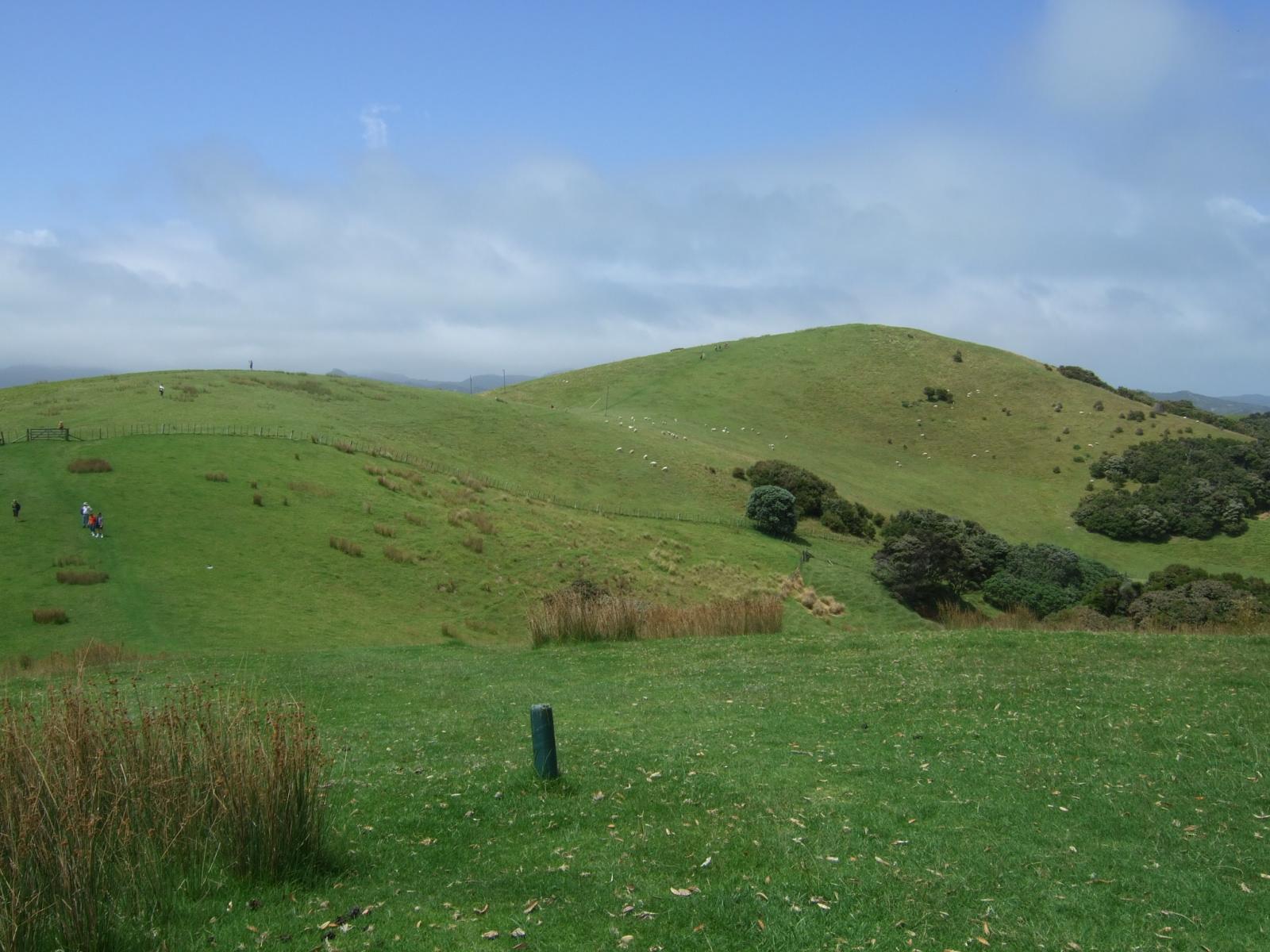 ウルプカプカ島,山,草原,NZ〈著作権フリー無料画像〉Free Stock Photos