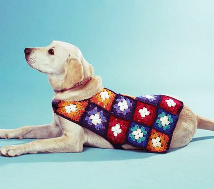 Free Crochet Granny Square Dog Sweater : Las Teje y Maneje: THURSDAYS DOGGY SWEATER 20