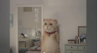 萬寧貓:萬寧貓 搵高山雪蓮救主人