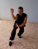 Kung Fu Estilo Hung Gar