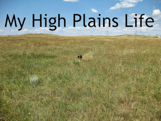 Www.Myhighplainslife.blogspot.com