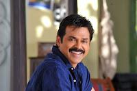 Venkatesh Stills In Seetamma Vakitlo Sirimalle Chettu