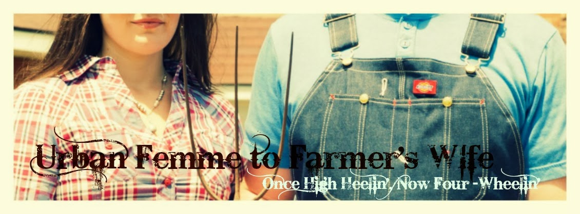 Urban Femme to Farmer's Wife