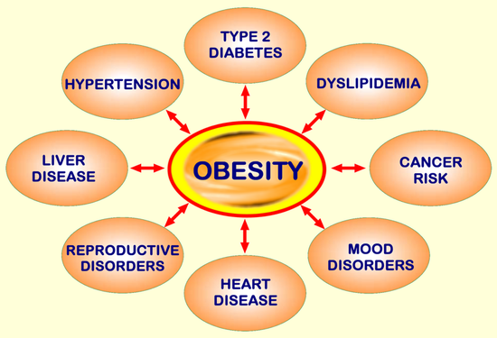 the health risks of being obese Information about the risks of being overweight and how to achieve and maintain a healthy weight.