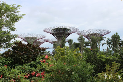 Garden By The Bay // photo by MelaniA - magsbeadscreation.com