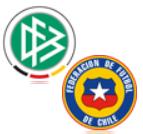 Live Stream Deutschland - Chile