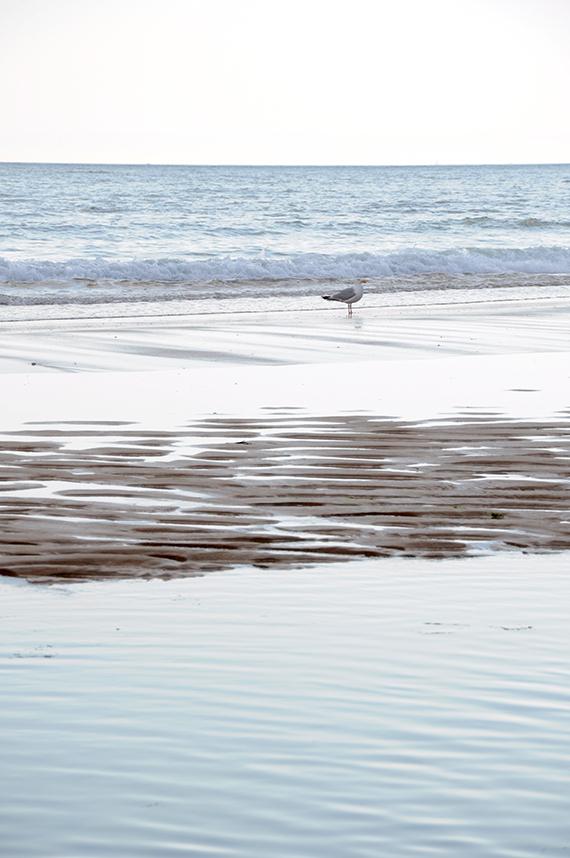Photo plage Boivinet Jard-sur-Mer marée basse