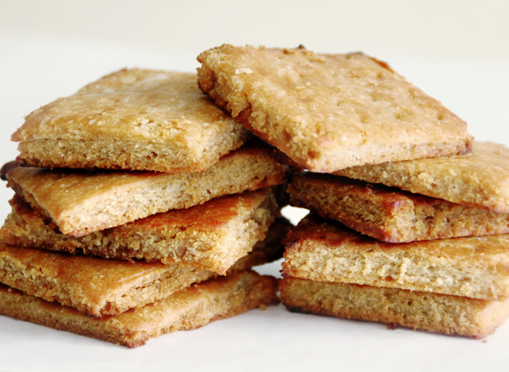 Homemade Graham Crackers | Gluten-Free, Dairy Free | B.A.S Blog