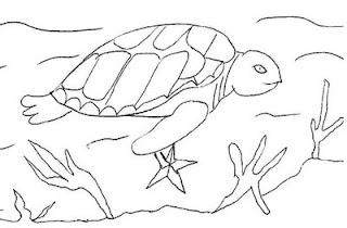 Desenhos sobre o Meio Ambiente para imprimir e pintar