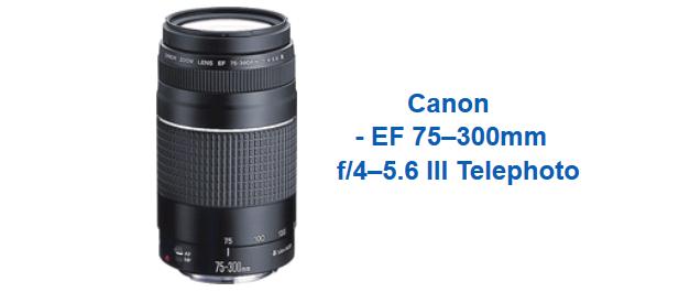 http://www.bestbuy.com/site/canon-ef-75-300mm-f-4-5-6-iii-telephoto-zoom-lens-black/2823760.p?id=1051806943002&skuId=2823760