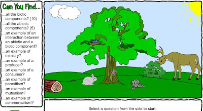 ecosystem interactive, ecosystem labeling, parts of an ecosystem, ecosystem activities for the classroom