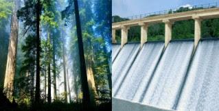 perbandingan lingkungan alam buatan dengan lingkungan alam