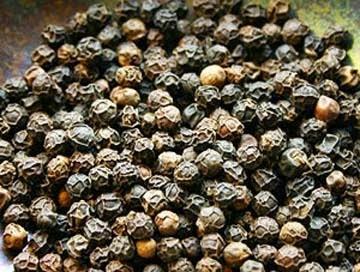 merica hitam - obat tradisional rematik